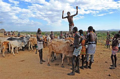 Bull Jump Hammar